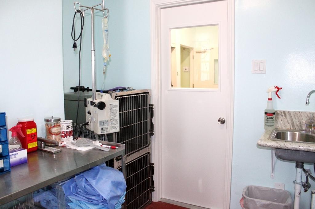 Isolation Boulevard Animal Hospital Garden Grove Ca